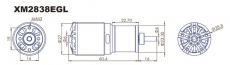 Dualsky XM2838EG-11L Außenläufer